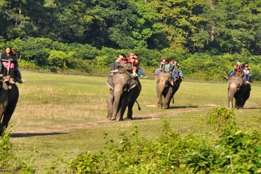 Chitwan Safari Packages